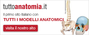 banner tuttoanatomia.it
